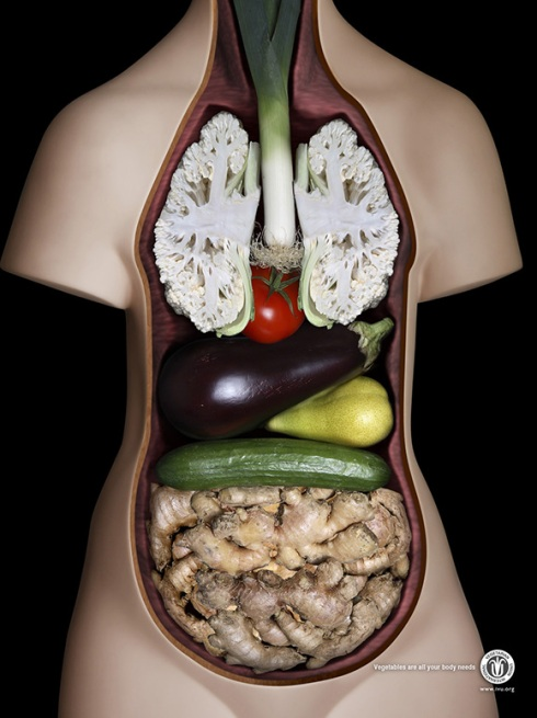 International-Vegetarian-Union